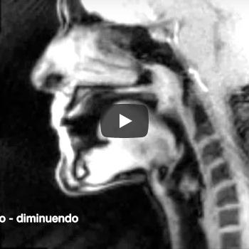 【動画】管楽器演奏中の口の中の変化
